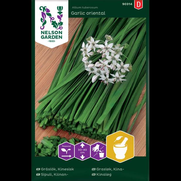 Kiinansipuli 'Garlic oriental', Monivärinen