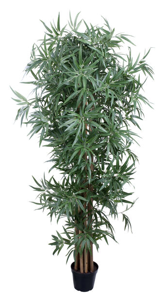 Bambu tekokasvi, Korkeus 180 cm, Monivärinen