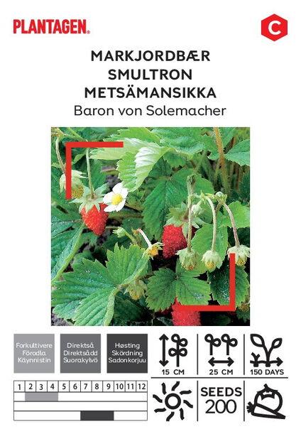 Metsämansikka 'Baron von Solemacher'