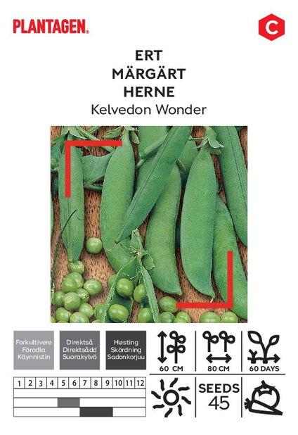 Herne 'Kelvedon Wonder'