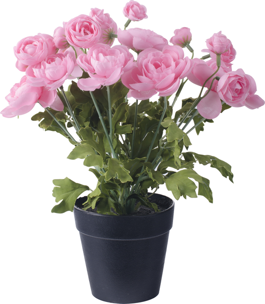 Tekokasvi Ranunculus 29 cm pinkki
