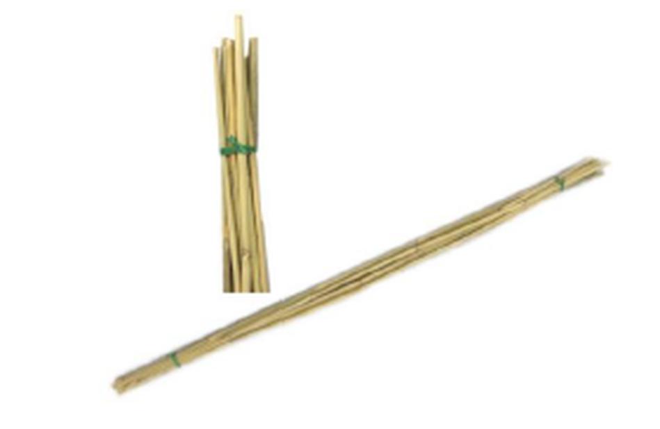 Kukkakeppi bambu, Korkeus 90 cm, Beige
