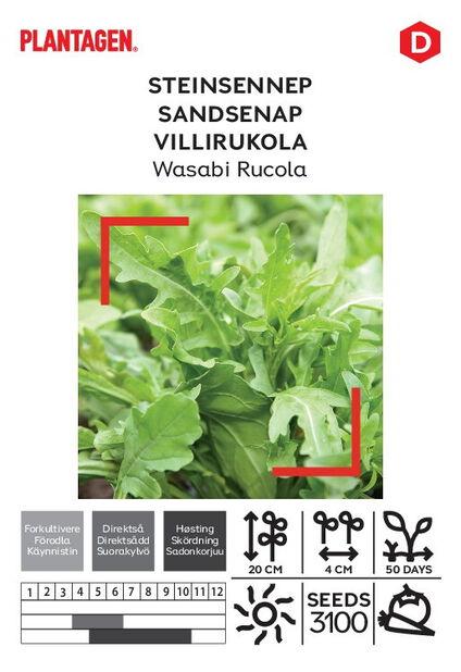 Wasabi Rucola