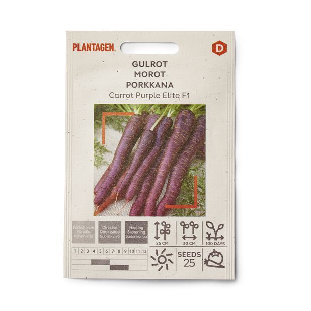 Porkkana 'Carrot Purple Elite F1'