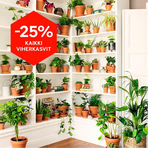 -25% kaikki viherkasvit